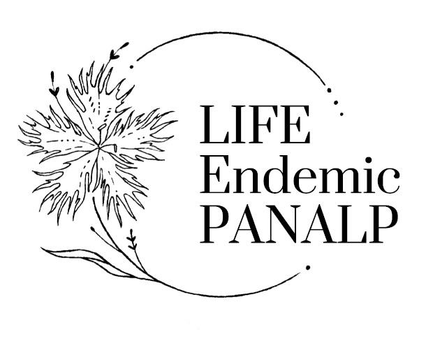 Life endemic panalp